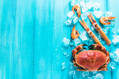 Mixed sea food border background Stock Images