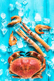Mixed sea food border background Royalty Free Stock Image