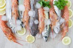 Mixed Seafood Stock Photos