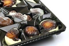 Mixed seafood chocolate Stock Photos