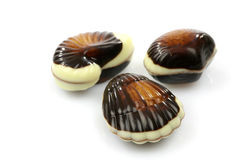 Mixed seafood chocolate Royalty Free Stock Images