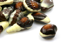 Mixed seafood chocolate Royalty Free Stock Photography