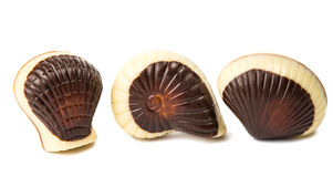 Mixed seafood chocolate candy Stock Photo