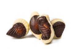 Mixed seafood chocolate candy Stock Photos