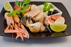 Mixed seafood. Delicacy healthy dinner seafood Stock Photos