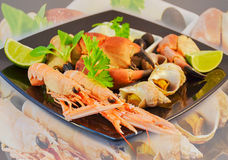 Mixed seafood. Delicacy healthy dinner seafood background Stock Image