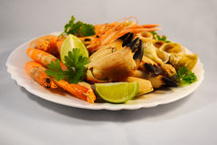 Mixed seafood. Delicacy healthy dinner seafood background Stock Images