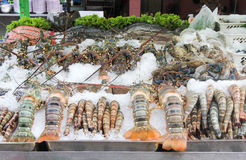Mixed seafood on ice Royalty Free Stock Photos
