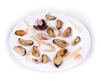 Mixed seafood plate. Stock Photo