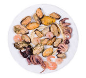 Mixed seafood plate. Royalty Free Stock Image