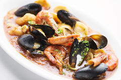 Mixed seafood in spicy tomato sauce stew Stock Images