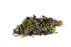 Mixed Seaweed. Dried mixed seaweed (Dulse, Laver, Sugar Kelp, Spirulina)  over white Royalty Free Stock Photos