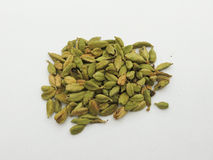 Mixed seeds Royalty Free Stock Images