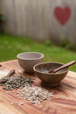 Mixed seeds on wooden background Stock Image