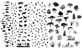 Mixed silhouettes set. Birds mamals fishes trees insects reptiles vector illustration