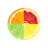 Mixed slice of citrus fruit Stock Photos