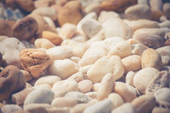 Mixed between small brown rocks with white rocks for garden decoration. Royalty Free Stock Images