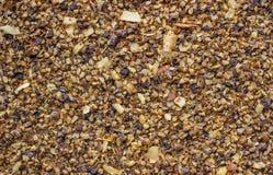 Mixed spices Stock Photos