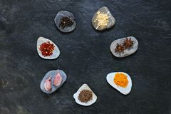 Mixed spices arranged in a circle Royalty Free Stock Images