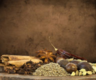 Mixed Spices Background Royalty Free Stock Images