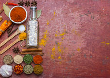 Mixed spices and herbs.Food and cuisine ingredients red backgro Stock Photography