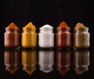 Mixed Spices And Salt I Stock Images