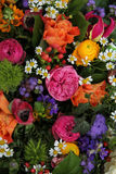 Mixed spring bouquet Stock Images