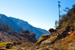 Mixed Spring forest and mountains view in Nepal Himalayas Royalty Free Stock Image