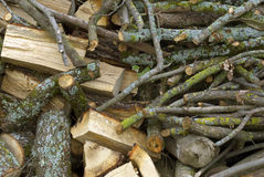 Mixed stacked firewood Stock Image