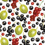Mixed summer berries pattern seamless Royalty Free Stock Photos