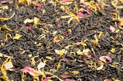 Mixed Tea with Flower Petals Stock Image