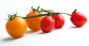 Mixed tomatoes Stock Photos