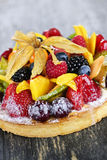 Mixed tropical fruit tart Stock Photography