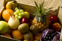 Mixed tropical fruits in a box. Fresh organic mixed various fruits in a brown cardboard box Stock Image