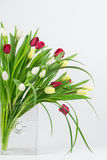 Mixed tulips in vase Royalty Free Stock Photography