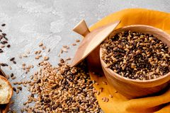 Mixed varieties of malted grain in a wooden plate on a gray background. close-up. series of photos. space. Mixed varieties of malted grain in a wooden plate on a royalty free stock images