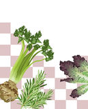 Mixed Vegetable Royalty Free Stock Photo