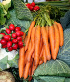 Mixed vegetable. On the market stock image