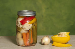 Mixed vegetable preserve Royalty Free Stock Photography