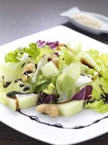 Mixed vegetable salad. A gourmet salad made of lettuce,cabbage,melon and cashius nuts with a balsamic vinegar dressing stock photo