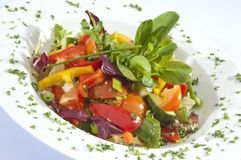 Mixed vegetable Salad Stock Image