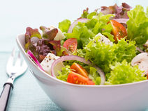 Mixed vegetable salad with tomatoes and feta cheese Royalty Free Stock Image