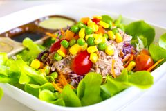 Mixed vegetable salad with tuna. Royalty Free Stock Photo