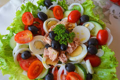 Mixed vegetable salad with tuna and olive oil Royalty Free Stock Photography