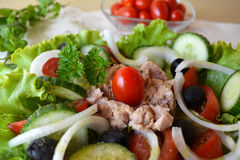 Mixed vegetable salad with tuna and olive oil Stock Photography