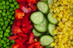 Mixed vegetables background Royalty Free Stock Image