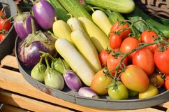 Mixed vegetables in a basket. For sale Royalty Free Stock Image