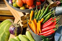 Mixed vegetables in a basket. For sale Stock Photography
