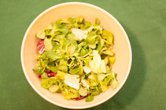 Mixed vegetables in a bowl Royalty Free Stock Images