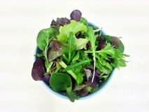 Mixed vegetables hydro greens salad, clean food, Diet food, Healthy food Stock Images